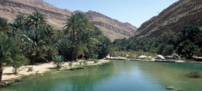 Wadi1.jpg